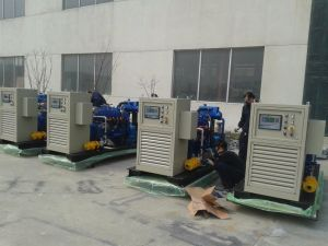 CE EPA 1000kw Natural Gas Biogas Power Plant pictures & photos