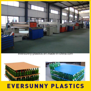 Pupular Corrugated Plastic PP Sheets pictures & photos