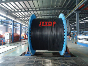 6/10kv Yxc7V-R (TS) XLPE Insulation PVC Sheath Copper Cable, N2xsy VDE0276 Cable pictures & photos