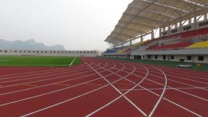 Featured Rubber EPDM Granule for Plastic Running Track pictures & photos