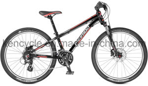 Hot Selling Mountain Bike/MTB Bike/Mountain Bike Bicycles/MTB Bicycles pictures & photos