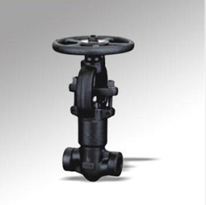 Forged Steel Self Seal Bellows Globe Valve (DTV-J009)