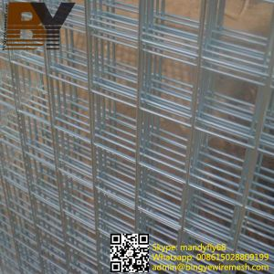 China Stainless Steel Welded Wire Mesh Panel - China Stainless Steel ...
