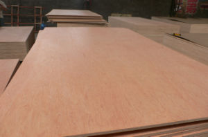 Bintangor Plywood Furniture Grade with Good Quality