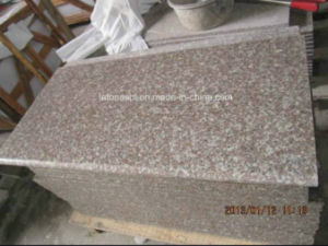 Polished Misty Brown Granite G664 Tiles pictures & photos