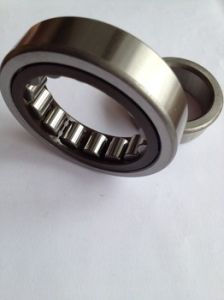 SL182234 Single Row Full Complement Cylindrical Roller Dpi Bearings pictures & photos
