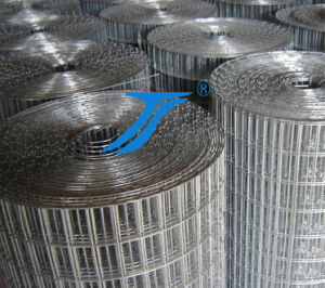 High Quality Welded Wire Mesh for Building pictures & photos