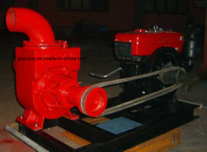 Big Water Pump 6 Inch with Great Power pictures & photos