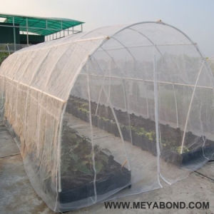 China Manufacturer Supply Agricultural Anti Insect Net/Shade Net for Greenhouse pictures & photos