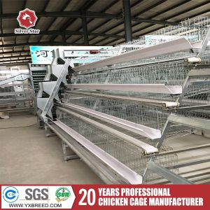 Layer Chickens Cage with Automatic System for Poultry Farm Degisn pictures & photos