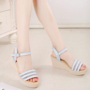 The New Spring and Summer with Thick Waterproof Sandals Heels Womens Casual Shoes Mouth Size Small Code 35-39 pictures & photos