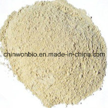 Low Pesticide Residue Asian Ginseng Extract 80%