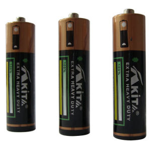 R6C AA Battery ( Akita) pictures & photos