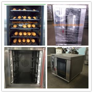 Stainless Steel Convection Oven with Steam System