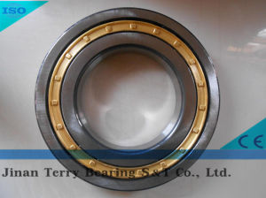 The Low Noice Cylindrical Roller Bearing (N304E)