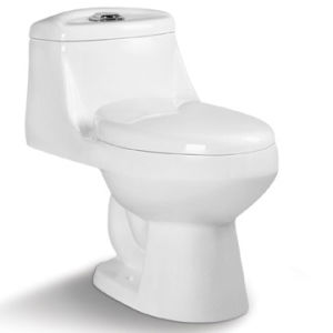 Hot Sale Sanitary Ware One Piece Toilet St1011