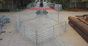 Sheep Yard for Sale pictures & photos