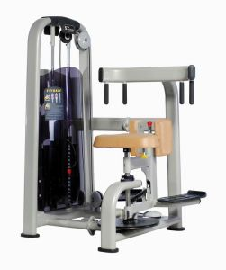 Fitness Equipment, Gym Equipment Rotary Torso (AF-7811)