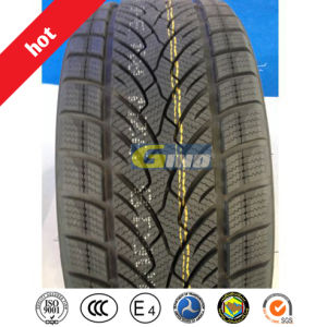 Good Price Car Tyre, PCR Tyre, SUV Tyre