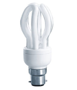 5u Lotus 40W CFL Lamp Light (BNF T2-5U-A) pictures & photos