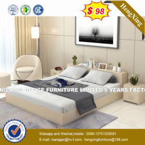 China Latest Design MDF Modern Apartment Pull out Sofa Bed (HX ...