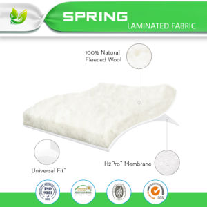 100% Lab Testified Mattress Protector Queen Bed Bug Proof 6 Side Waterproof Encasement pictures & photos