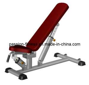 Multi-Adjustable Bench Free Weight Commercial Fitness/Gym Equipment with SGS