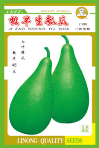 Early-Fruiting Bottle Gourd Seeds (108)