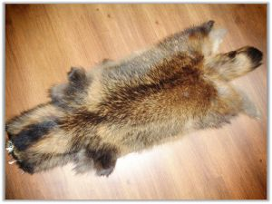 China Raccoon Fur Garment, Raccoon Fur Garment Wholesale