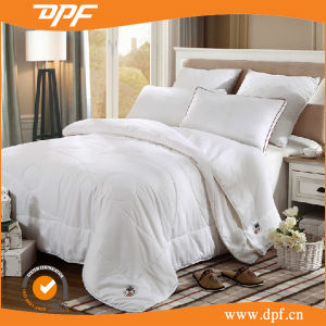 100% Silk White Quilt for High Standard Hotel (DPF201527) pictures & photos