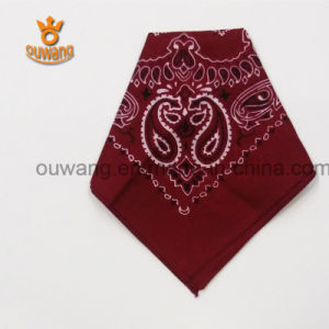 Customized Cotton Square Paisley Scarf pictures & photos