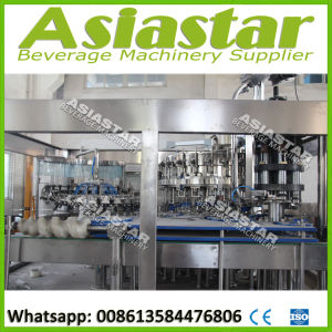 Fully Automatic Glass Bottle Beer Processing Plant pictures & photos