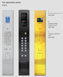 Passenger Elevator with Golden Etching Decoration Ds-J020 pictures & photos