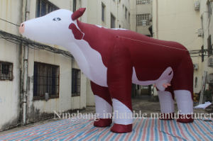 Popular Animal Inflatable Dairy Cow/Cattle for Outdoor Advertising