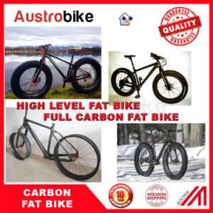 Complete Fat Bike Fatbike 26er Carbon Fat Bike with Hydraulic
