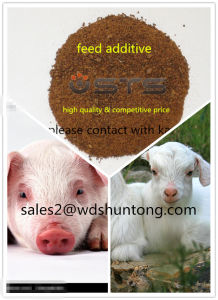 Protein Powder Shrimp Meal for Animal Feed with High Quality