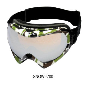 Stylish Snow Glasses (SNOW-700) pictures & photos