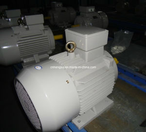 Ye2 Cast Iron Three Phase AC Induction Electric Motor pictures & photos