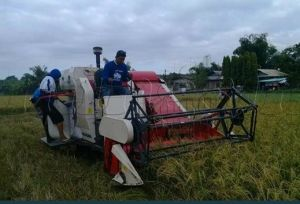 4L-2.0 Wheat and Rice Combine Harvester pictures & photos