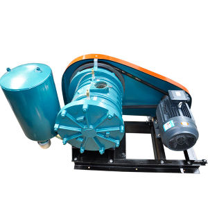Rotary Air Blower for Family Sewage Aeration