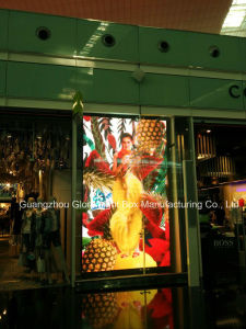 P3.33 Full Color Clothes Window Showing Digital Screen pictures & photos