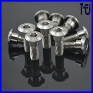 China Ti Titanium Bolts M5 M3 M6 M2 M8 Screws Disc Rotor
