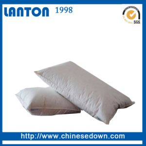 High Quality Down Filled Pillow for Home Textile in Stock pictures & photos
