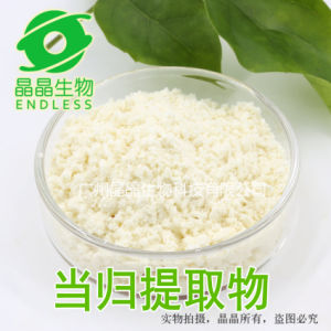 Angelica Root Extract Powder Best Price Angelica Sinensis pictures & photos