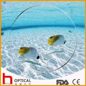 1.60 Single Vision Spin Coating Photogray Optical Lens pictures & photos