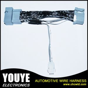 Automotive Wire Harness for Truck Tractor pictures & photos