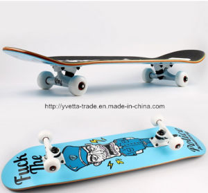 Professional Skateboard with En 13613 Certification (YV-3108-3)