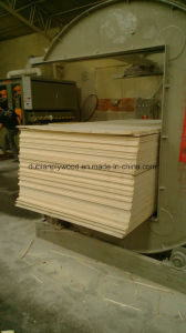 Filmfaced Plywood for Construction and Shuttering pictures & photos
