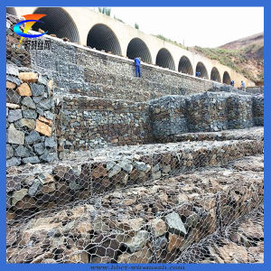 Anping Cheap Hexagonal Gabion Mesh for Sale pictures & photos