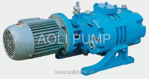 Zj Single Stage Roots Vacuum Pump pictures & photos